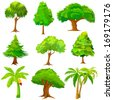 vector illustration of collection of Tree - stock vector