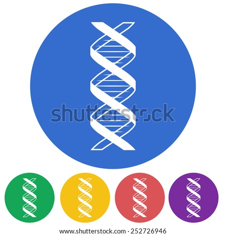 Vector illustration of color DNA icon on white background.