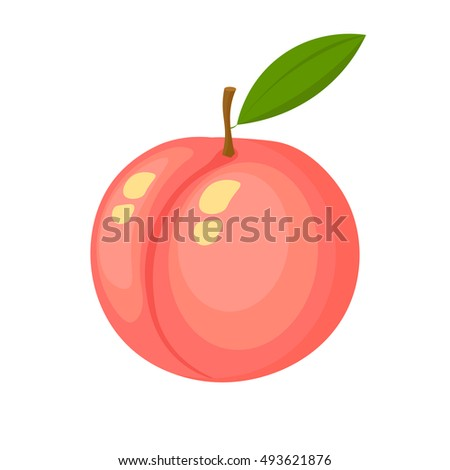Vector illustration of colorful fruit. Fresh peach. Fruit isolated on background. Icons of fruits. Logo.