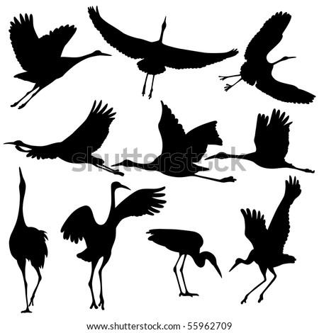 Vector illustration of Crane Silhouettes. - stock vector