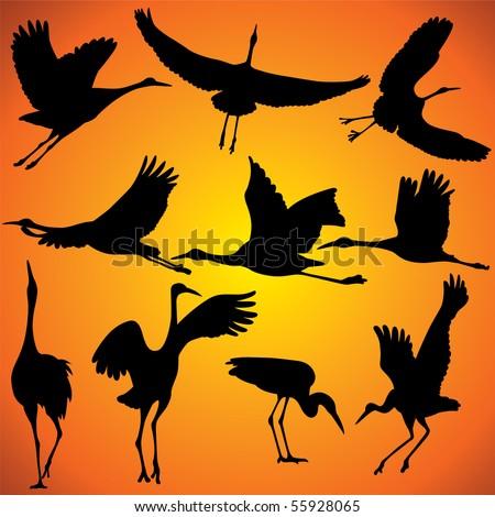 Vector illustration of Crane Silhouettes against orange sky. - stock vector