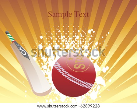 vector  illustration of cricket background - stock vector