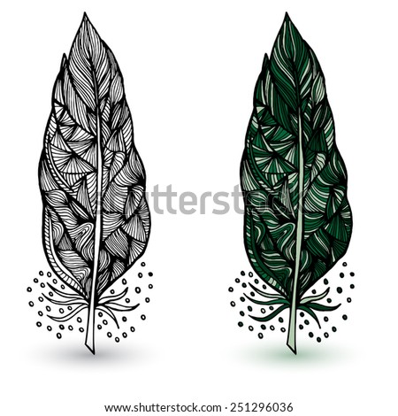 Vector illustration of Decorative feathers. Hand drawn vector illustration - stock vector