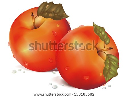 Vector illustration of detailed big fresh red apples - stock vector