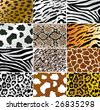 Vector Illustration of different animals and snakes skins - stock vector