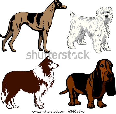 Vector Illustration of 4 different dogs. Dogs2 - stock vector