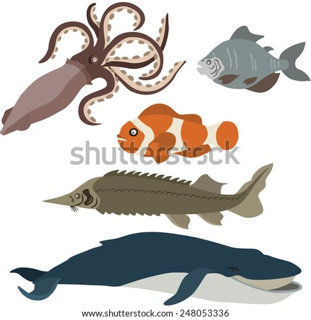 vector illustration of different fish - stock vector