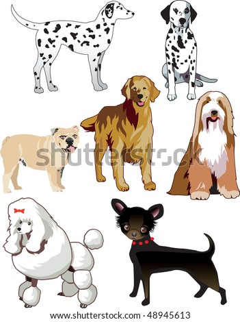 Vector Illustration of 7 dogs or puppies isolated. - stock vector