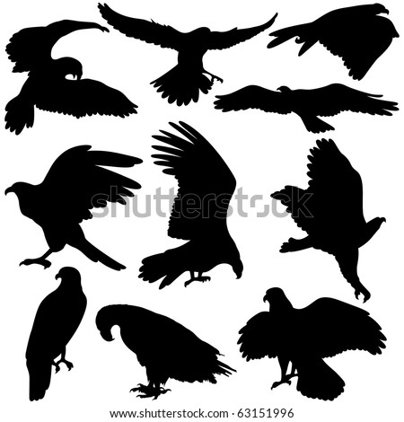 Vector illustration of Eagles silhouettes on white background.