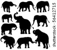 Vector illustration of Elephant silhouettes on white background. - stock photo
