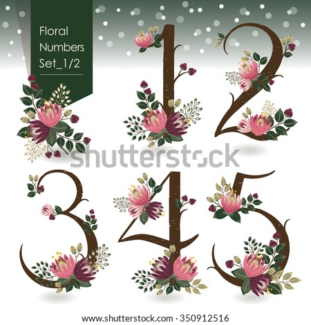 Vector illustration of floral numbers collection in winter. A set of beautiful flowers and numbers for wedding invitations & birthday cards & Merry Christmas cards - stock vector