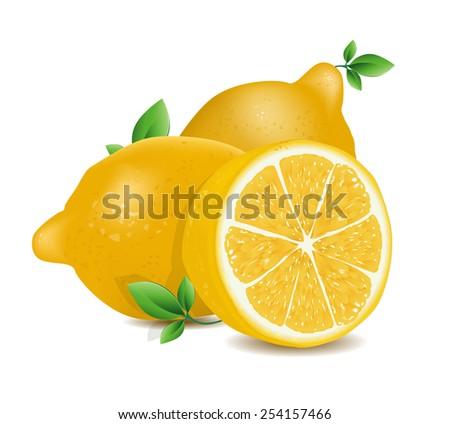 Vector illustration of fresh lemons with leaves  - stock vector