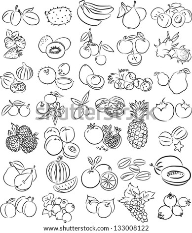 vector illustration of  fruits collection in black and white - stock vector
