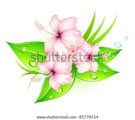 Vector illustration of funky summer hibiscus flowers - stock vector