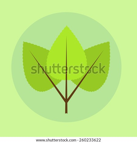 Vector illustration of green leaves of birch. Spring leaves composed on green background - stock vector