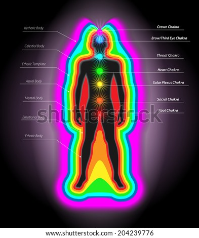 Vector Illustration of Human Auras and Chakras, Eps10 Vector, Gradient Mesh and Transparency Used - stock vector