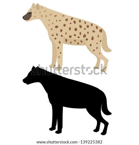 Vector illustration of hyena isolated on white - stock vector