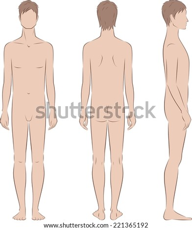 Vector illustration of male silhouette. Body type with poorly developed fat deposition and musculature. Front, back, side views - stock vector