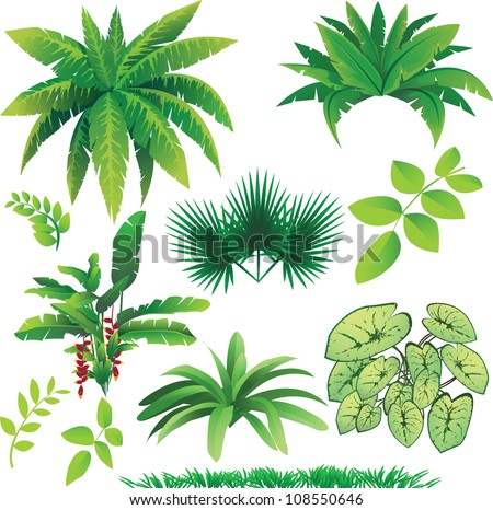 vector illustration of many plants, great collection for nature design - stock vector