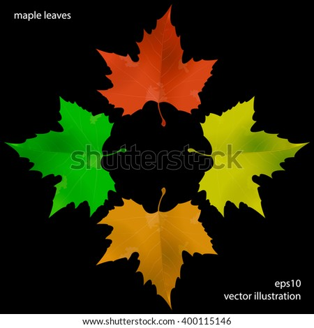 Vector illustration of maple leaves in four colors. Maple leaves background. Four colored maple leaves. Realistic maple leaves background. Natural vector background with maple leaves. - stock vector