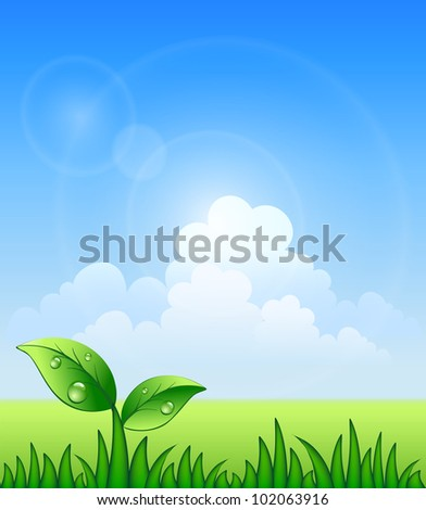 Vector illustration of meadow. Sky and grass - stock vector