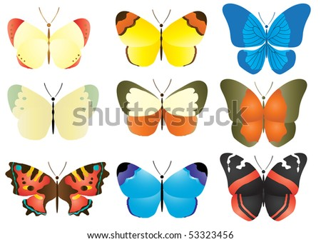 Vector illustration of multicolored butterfly collection