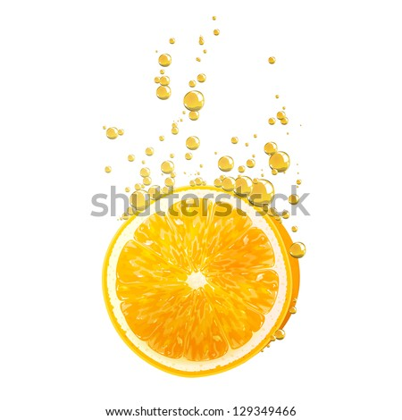 Vector Illustration of Orange Fruits falling in liquid - stock vector