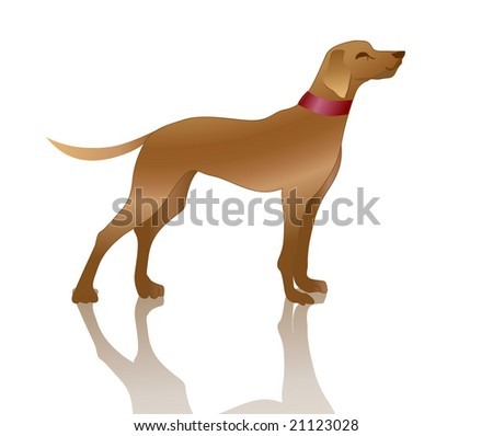 Vector illustration of playful dog and his shadow.