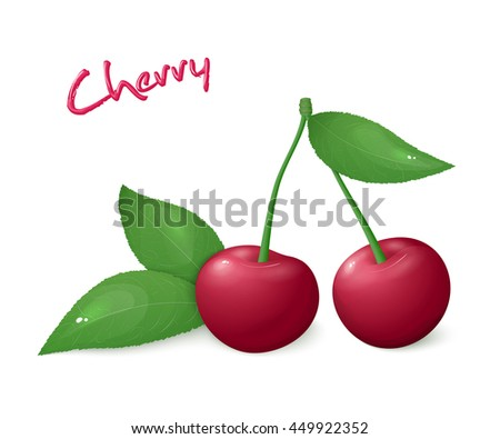vector illustration of realistic isolated ripe cherry with leaves. - stock vector