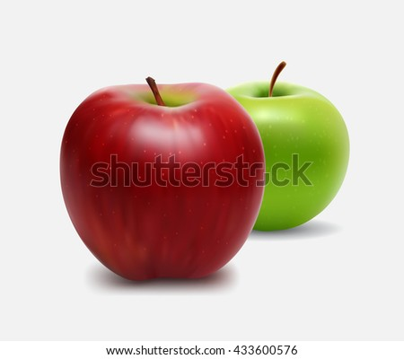 Vector illustration of red and green apple