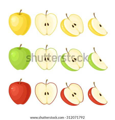Vector illustration of red, green, yellow ripe apple - whole and slice isolated on white background.  - stock vector