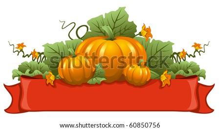 Vector illustration of ripe october pumpkin - stock vector