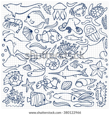 Vector illustration of  sea and ocean hand drawn elements on squared paper - stock vector