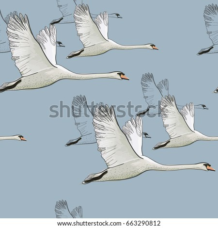 Aninimal Book: Swan Stock Images, Royalty-Free Images & Vectors ...