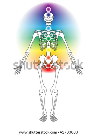 vector illustration of skeleton with seven chakras - stock vector
