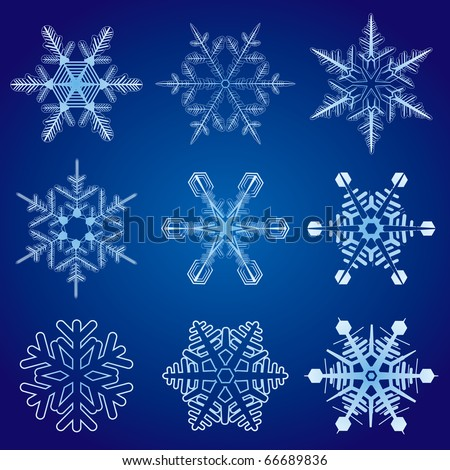 vector illustration of snowflakes collection - stock vector