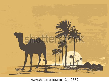 Vector illustration of  sunset in african desert. Camel and palms on grunge background - stock vector