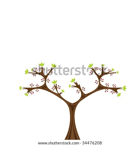 Vector illustration of sweet green barberry bush