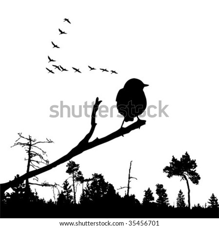vector illustration of the bird on branch - stock vector