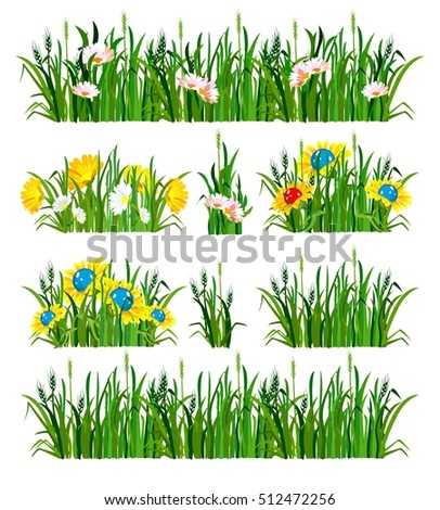 vector illustration of the composition of the grass and flowers isolated on white background
