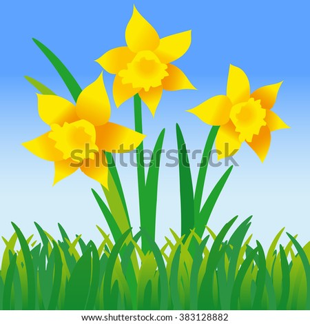 Vector illustration of three daffodils in green grass; Happy Easter - stock vector