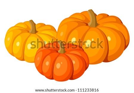 Vector illustration of three pumpkins. - stock vector