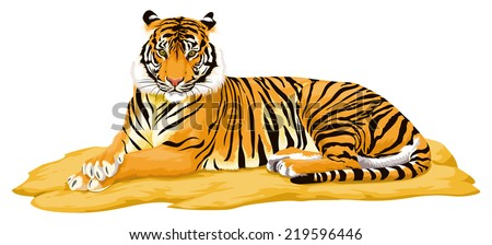 Vector illustration of tiger. - stock vector