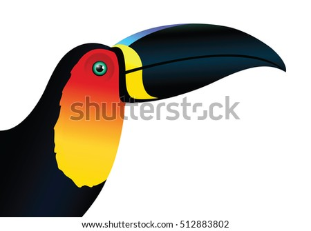 Vector illustration of toucan for your design
