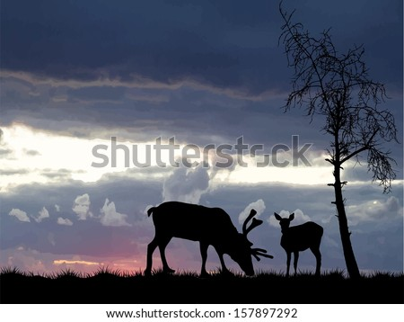 Vector illustration of two deer and tree on background a sunrise