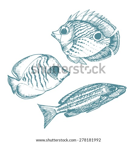 Vector Illustration of various sea inhabitant doodled in a vintage style.