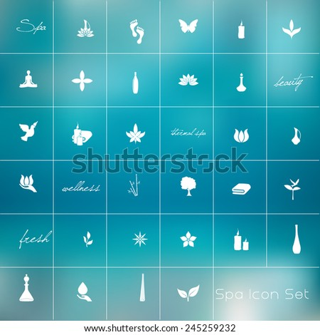 Vector illustration of various spa icons - stock vector
