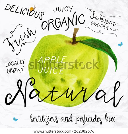 Vector illustration of watercolor apple, hand drawn in 1950s or 1960s style. Concept for farmers market, organic food, natural product design, soap package, herbal tea, etc.