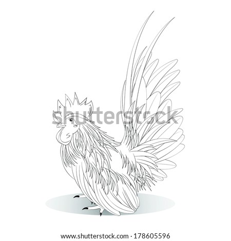 Vector illustration of white Bantam on a white background - stock vector