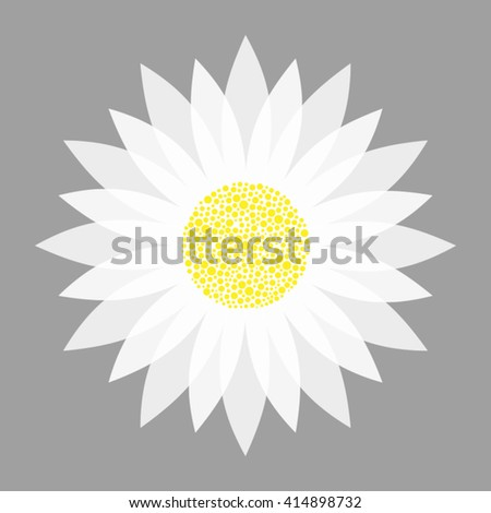 vector illustration of white flower on grey background - stock vector